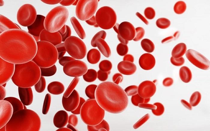 Что такое анемия изображение